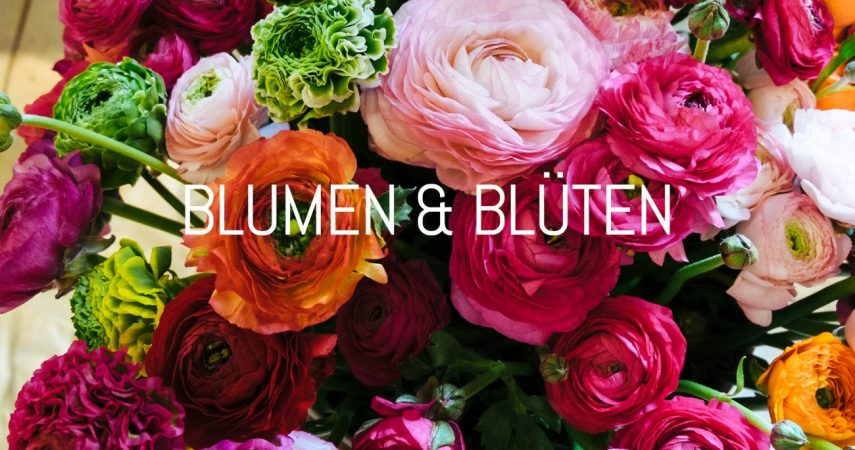 blumenundblüten